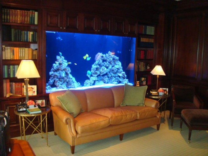 innovative Aquarium Designs
