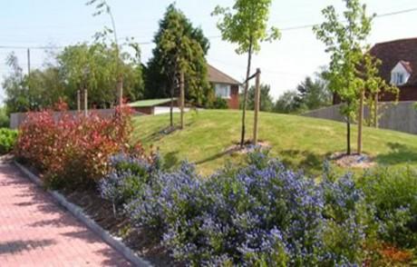 Garden Planting Schemes