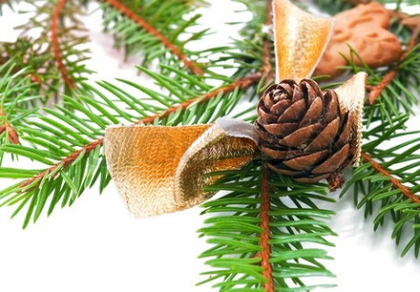 Decorated fir tree