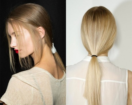 Blonde Low Ponytail Hair Style
