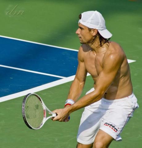 David Ferrer Hot Picture